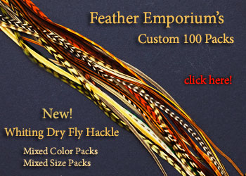 Irish Fly Supplies A Pair of Intense Red Barred Turkey Broad Wing Quills