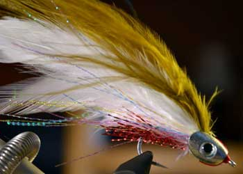 Image result for world's best saltwater nicest fishing flies